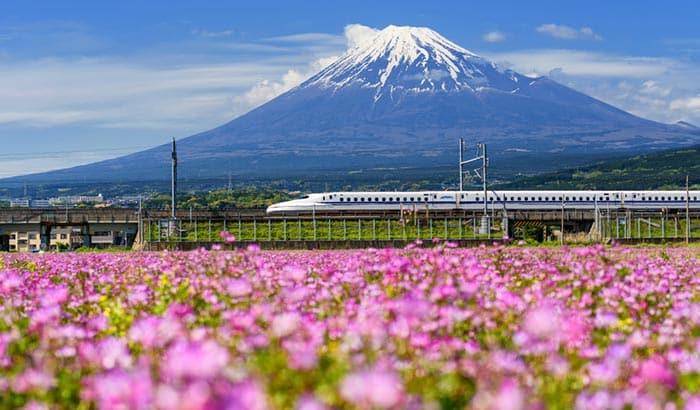 Opzioni di Viaggio per andare da Nagoya a Tokyo