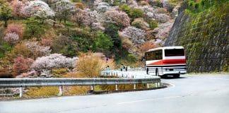 Viaggiare in Autobus in Giappone
