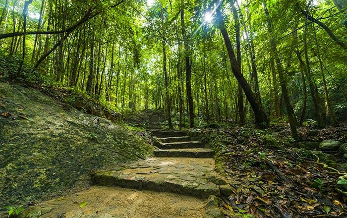 Trekking a Koh Tao
